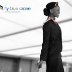 fly-blue-crane